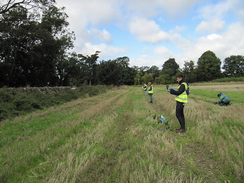 Field odour surveys