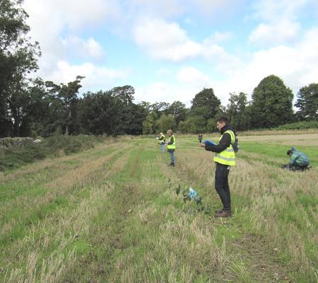 Field odour impact survey