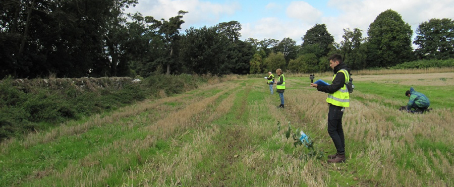 FIELD ODOUR SURVEYS